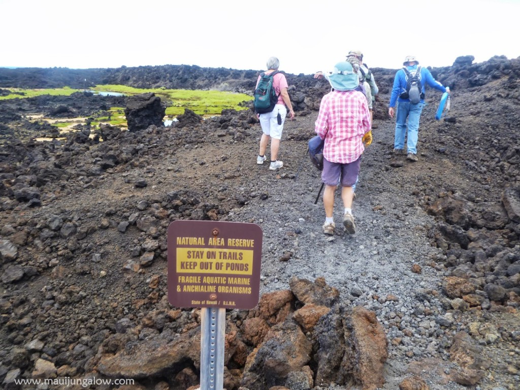 hawaii walking on lava